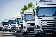 Trucks in Reihe 2015